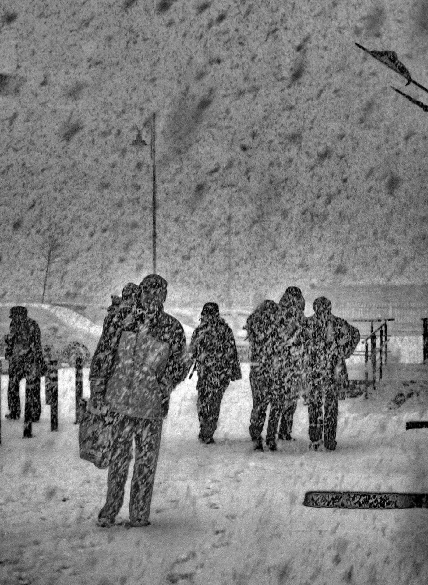 dernieres neiges.JPG1.jpg