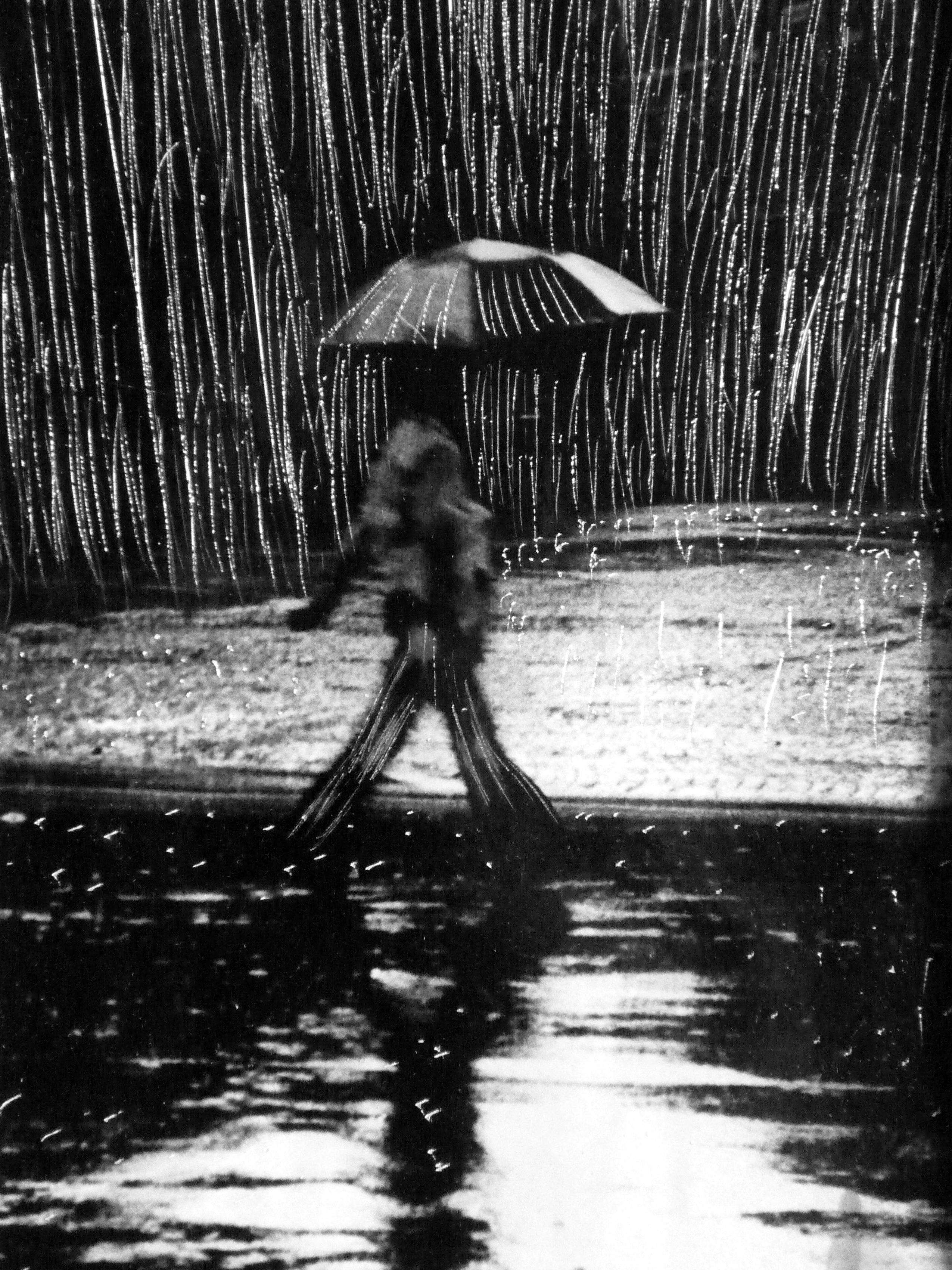 pluie battante 20