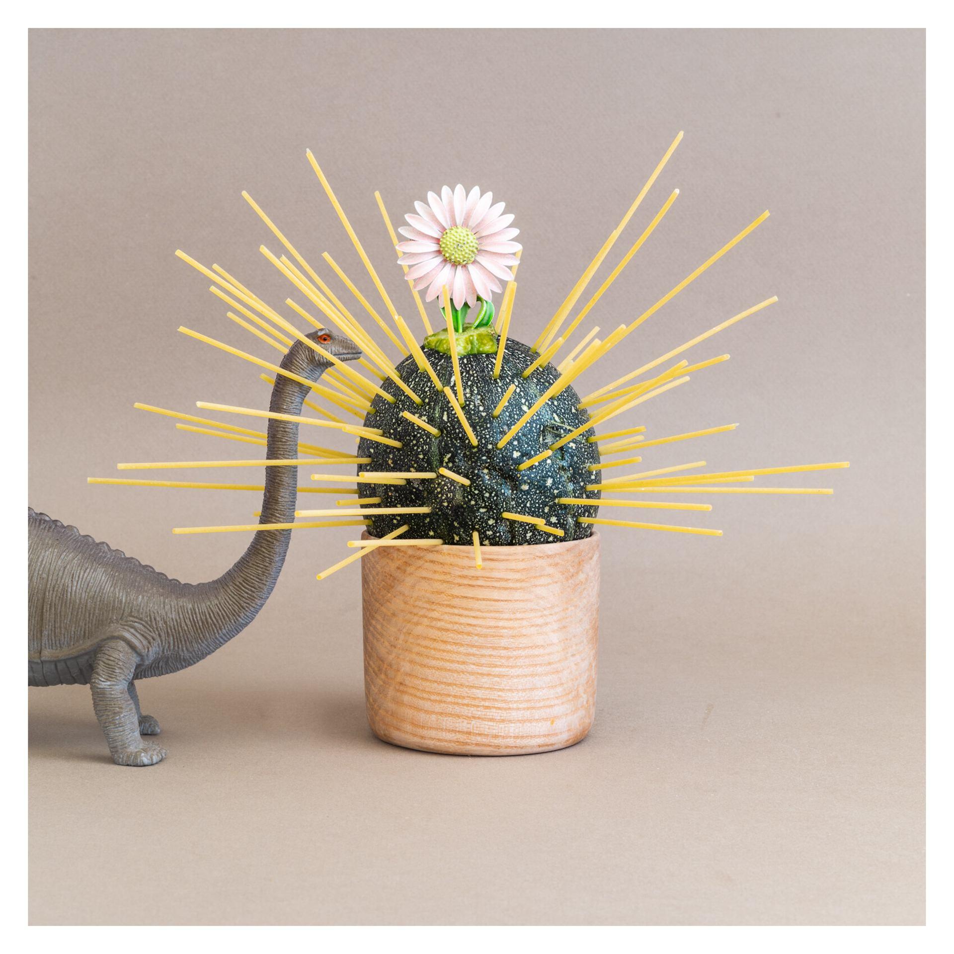 Spaghettis aux courgettes sur fleur de brontosaure