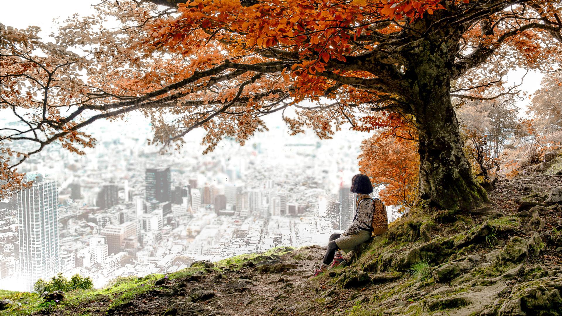 contemplation urbaine