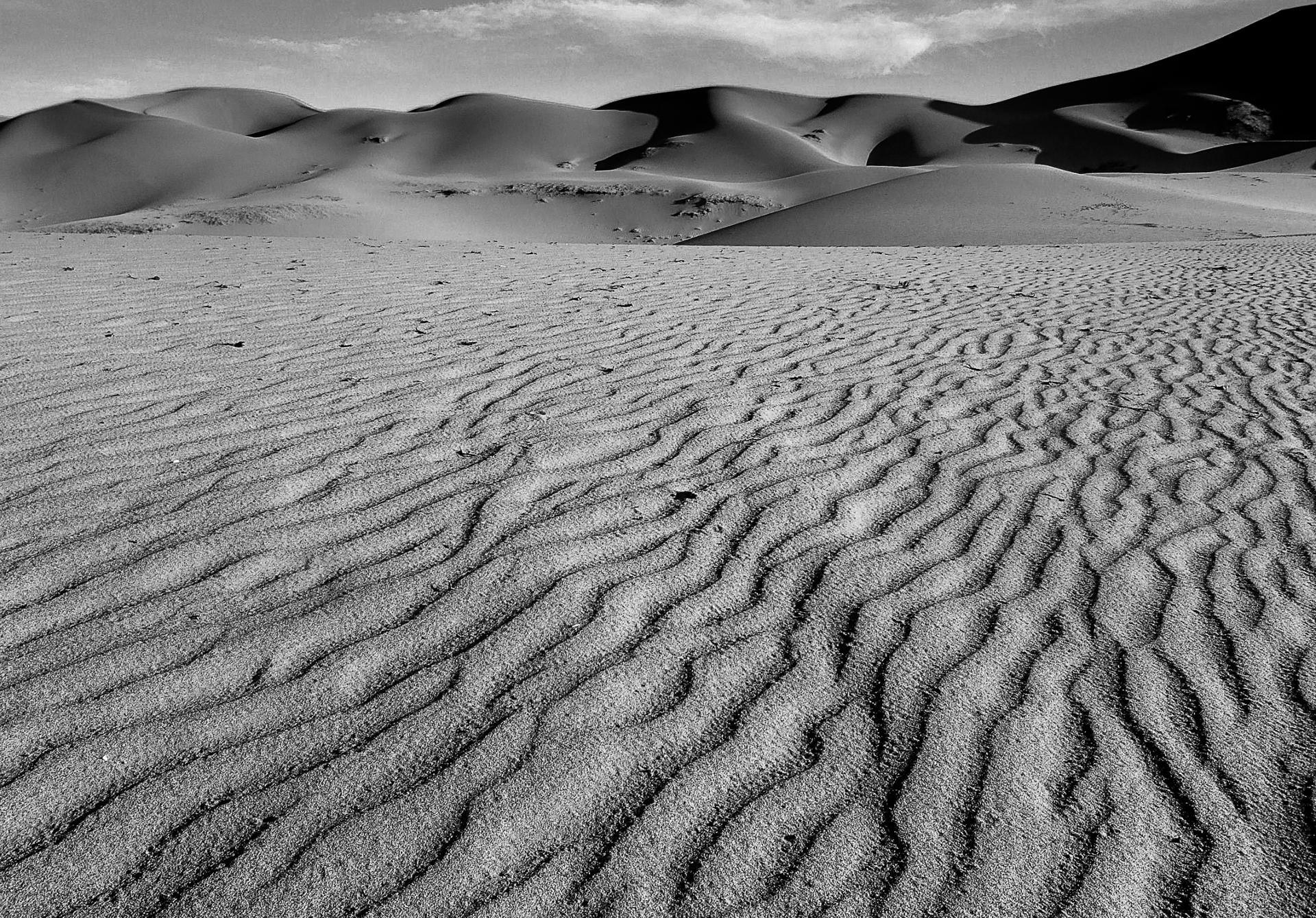 Vaguelettes de sable, gobi, mongolie