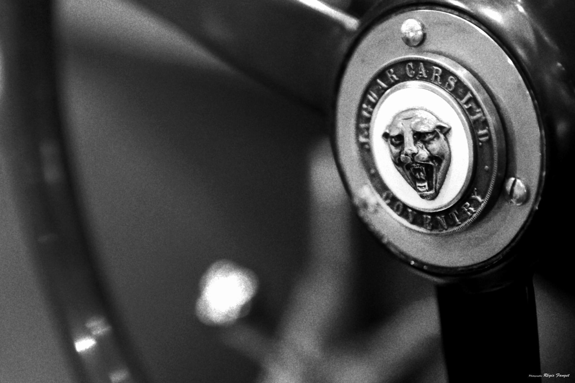 type C Fangio