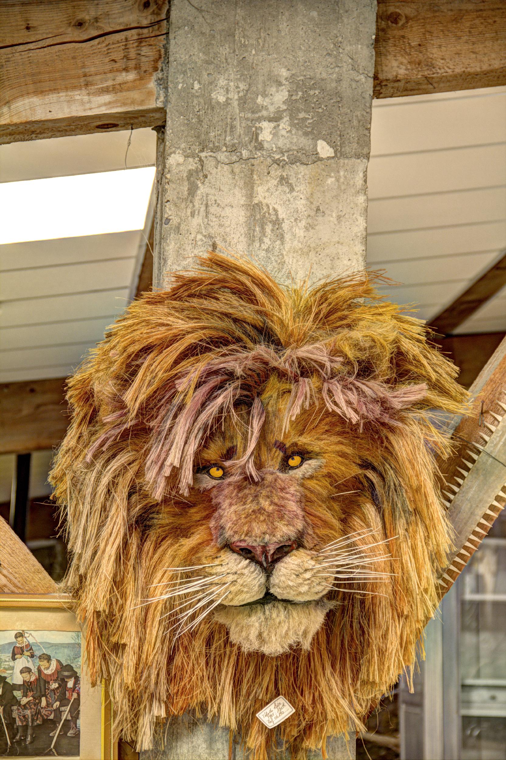 Le lion est mort ..ce soir