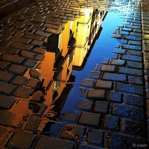 The Royal Academy of History reflected on a puddle