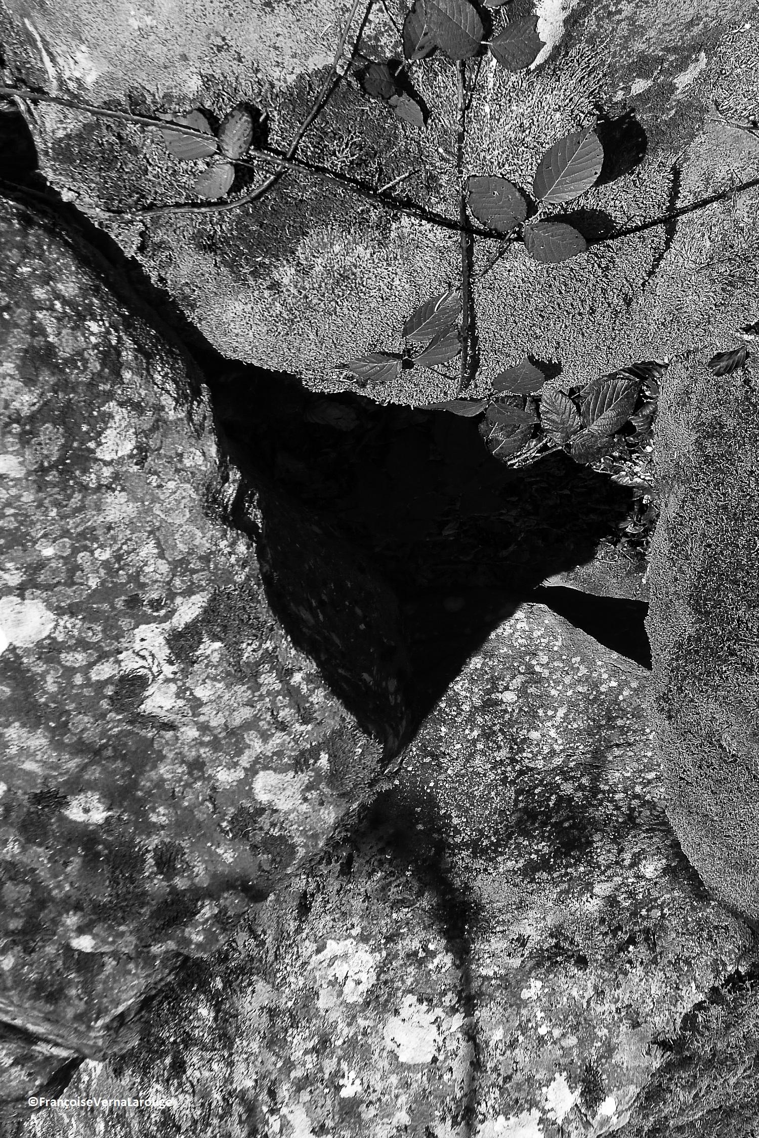 Auvergne2019 ©FrançoiseVernaLarouge(2)